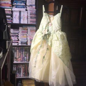 Disney Parks Tiana Costume XL (14)